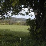 wandern_um_alfeld